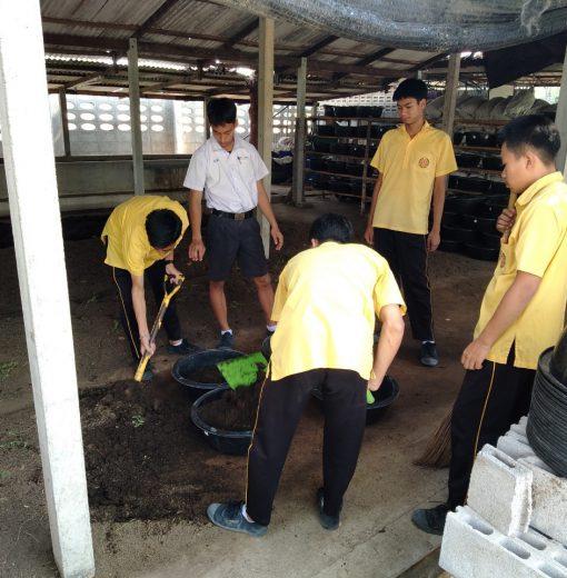 โครงการเกษตรรุ่นใหม่ (กลุ่มยุวเกษตรกร TMV ท่ามะกาวิทยาคม)